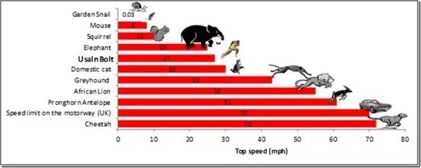 What is Usain Bolt Top Speed? 3