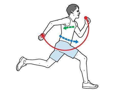 Arm Swings in Sprints
